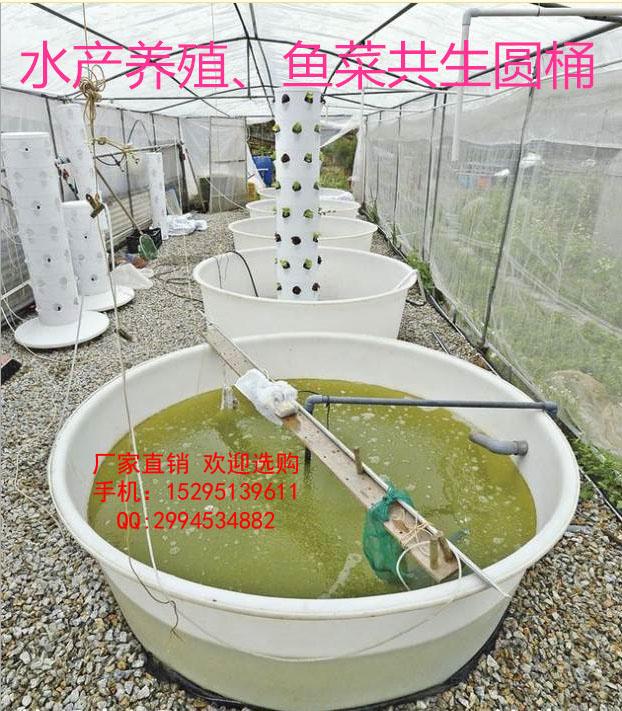5000L牛筋水产养殖桶 5000L鱼菜共生大桶 5000L食品脱脂桶  鱼菜共生(Aquaponics)是一种新型的复合耕作体系,它把水产养殖(Aquaculture)与水耕栽培(Hydroponics)这两种原本完全不同的农耕技术,通过巧妙的生态设计,达到科学的协同共生,从而实现养鱼不换水而无水质忧患,种菜不施肥而正常成长的生态共生效应。在传统的水产养殖中,随着鱼的排泄物积累,水体的氨氮增加,毒性逐步增大。而在鱼菜共生系统中,水产养殖的水被输送到水耕栽培系统,由微生物细菌将水中的氨氮分解成亚硝酸盐和硝