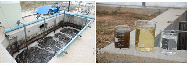 定点屠宰场污水处理设备设计及安装调试