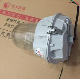 应急型三防工厂灯50W无极灯自带蓄电池
