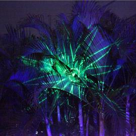 Waterproof laser light 满天星激光灯 圣诞激光灯 草坪灯