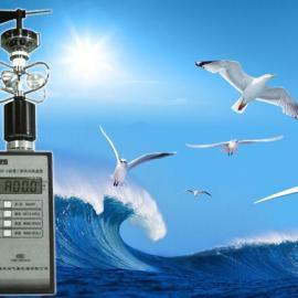 轻便三杯风向风速仪(铝杯),生产FYF1便携式风向风速仪