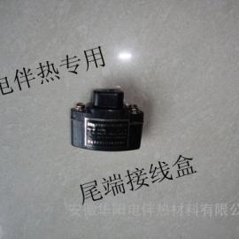 电伴热带尾端接线盒FZH-40A防爆终端接线盒
