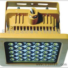 SBD48-L防爆免维护节能灯SBD48-L(IED光源)