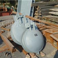 加工定制碳钢拍门