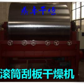 乳清干燥机,滚筒刮板烘干设备