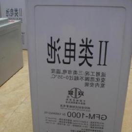 江苏双登免维护铅酸蓄电池
