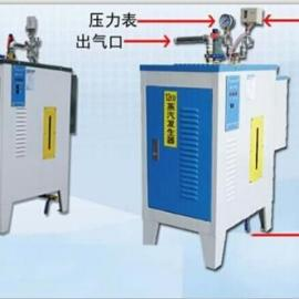 飞渡36千瓦全自动小型免检电蒸汽发生器