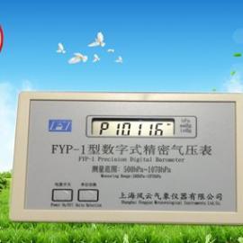 FYP-1型精密数字大气压表(A级表)/厂家直销