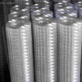 海口外墙挂镀锌钢丝网0.6丝标准钢丝网*粉墙电焊网专业厂家