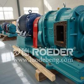 南宁转子泵厂家出售罗德凸轮泵