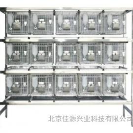 RS-12不锈钢干养式实验兔笼