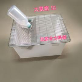H1大鼠笼/带不锈钢网盖/带饮水壶