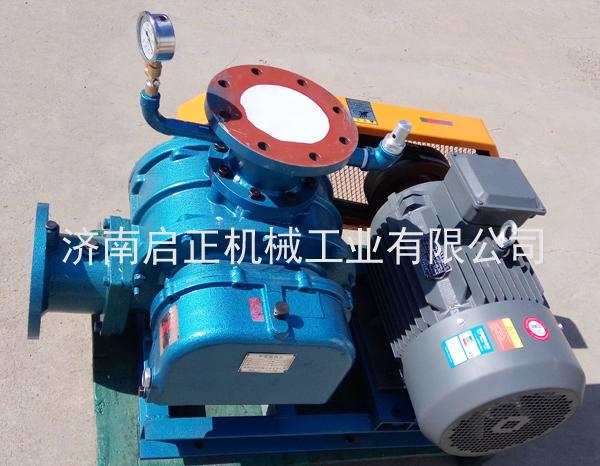 负压风机 罗茨真空泵CCR125V 15KW真空包装 吸颗粒物