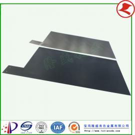 厂家供应毛纺染整废水的处理用钛电极
