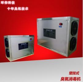东莞食品包装车间壁挂式臭氧消毒机