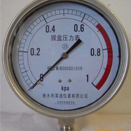 YE150B不锈钢膜盒压力表厂家直销6kpa现货供应