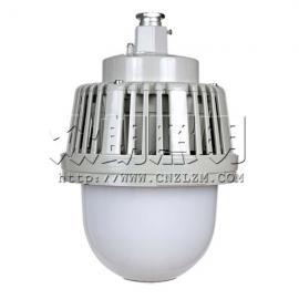 BF309E固态防爆照明灯 BF309E防爆LED灯