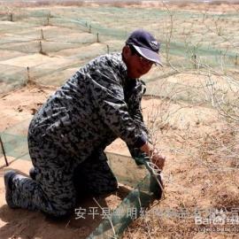 HDPE经编防风阻沙网是一种塑料经编高立网防风阻沙止漠