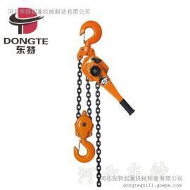 东特手扳葫芦厂家直销,经久耐用 供应多种型号-葫芦