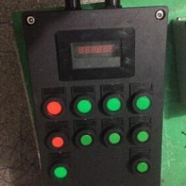 BYB8050-V防爆防腐仪表箱