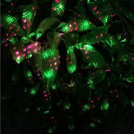 激光地插灯 庭院景观草坪灯 圣诞户外防水激光灯 镭贝森LBS-212-1