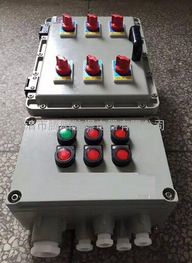 壁挂式安装防爆照明配电箱总开关100A