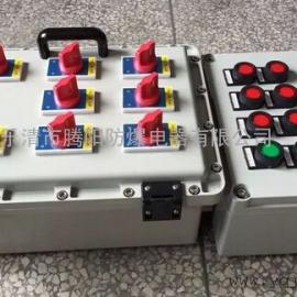 设计制造多回路动力防爆配电箱(柜)厂