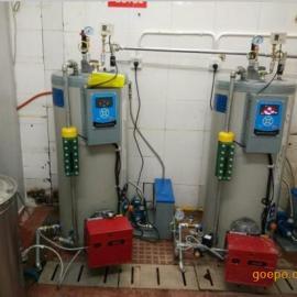 飞渡50公斤小型立式节能夹层锅燃气蒸汽发生器