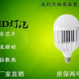 LED鸟笼球泡灯厂家质保二年批发直销