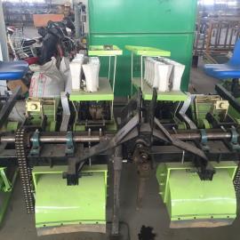 新一代秧苗移栽机高效率 厂家直销 欢迎选购