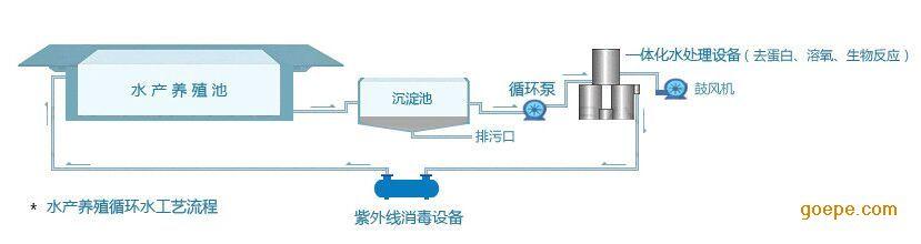 舌鳎养殖循环水处理系统设备