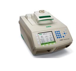 伯乐 S1000梯度PCR仪报价