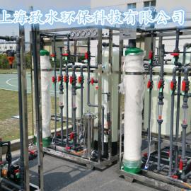 四川日化产品用去离子水设备ZSQJ-S1000L