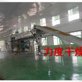 HPMC纤维素项目多层网带式干燥机