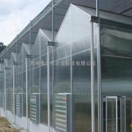 连栋温室设计建造