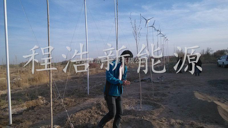 青海,西藏,甘肃风力发电机,风光互补发电