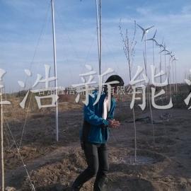 青海 西藏 甘肃1000w风力发电机厂家批发价格