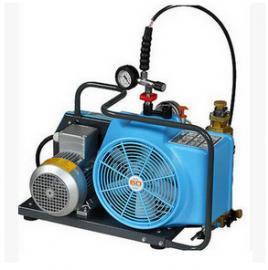 日本宝华junior-ii-E 宝华空压机宝华风味气体填充泵