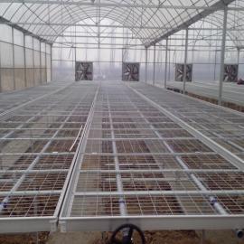 蘑菇网@室内蘑菇网@蘑菇网生产厂家