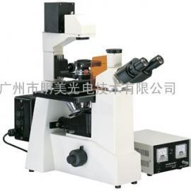 倒置荧光显微镜 MF51