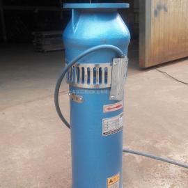 QSP65-10-3喷泉泵,景观泵,铸铁喷泉泵