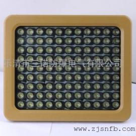 100W免维护防爆LED灯