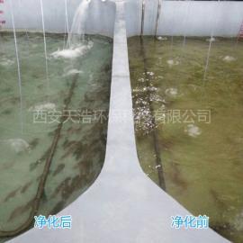 鱼池水处理设备