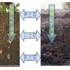 电催化水修复污染土壤