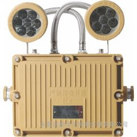 双头应急防爆灯、楼道应急照明灯BXW6229