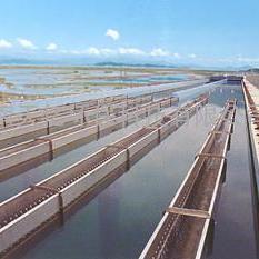 北海平流式沉淀池集水槽厂家、不锈钢集水槽安装