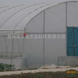 食用菌温室大棚