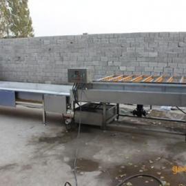 邢台不锈钢蔬菜清洗机、诸城利杰、不锈钢蔬菜清洗机设备