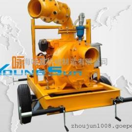 柴油机水泵 柴油机排污泵 柴油机P-8泵