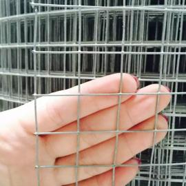 无锡抹灰抗裂镀锌钢丝网* 钢丝网 外墙保温墙面网 批发